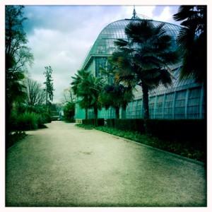 Aspect du jardin des Serres d'Auteuil. Photo: PHB/LSDP